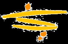 gzw-logo